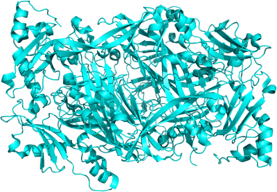 [Bild: Diaminoxidase]
